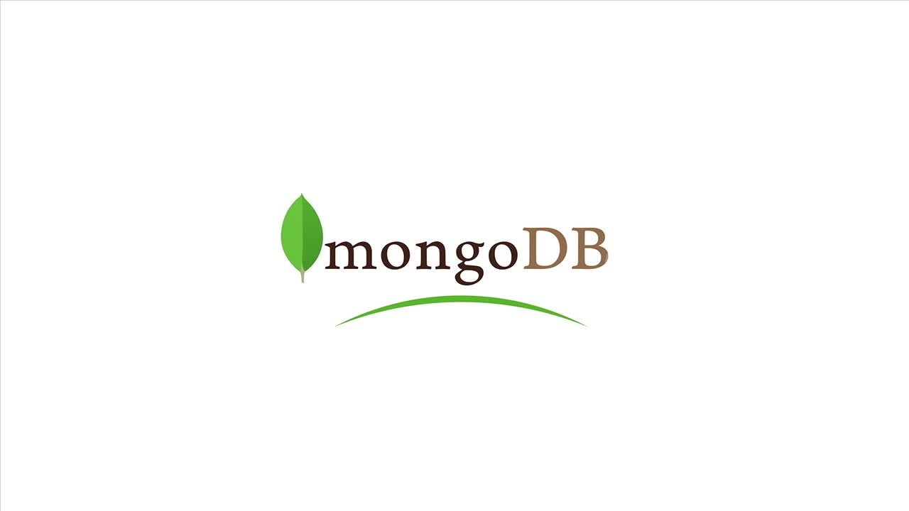 accelerating mongodb with speedus