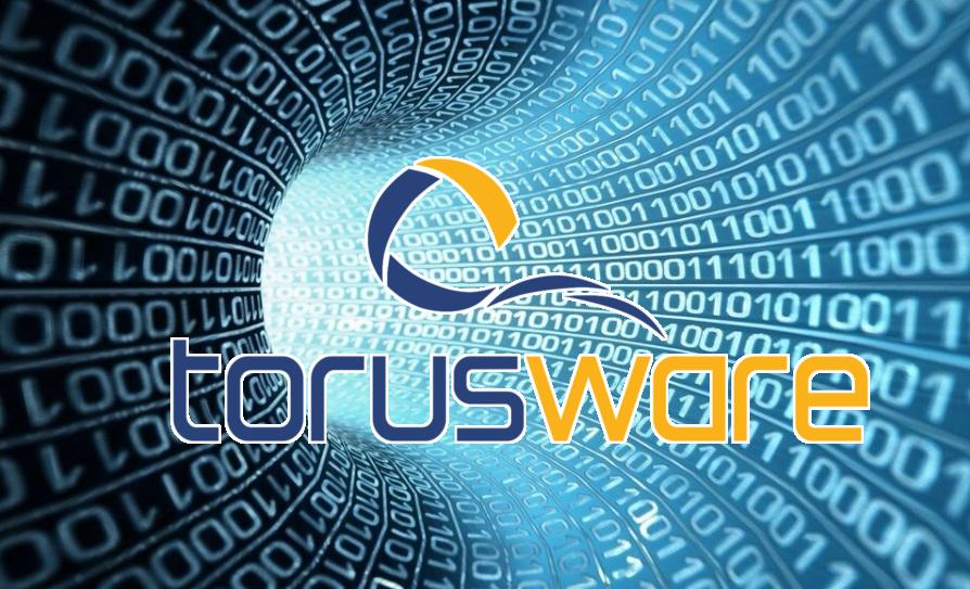 torus-BIG-DATA